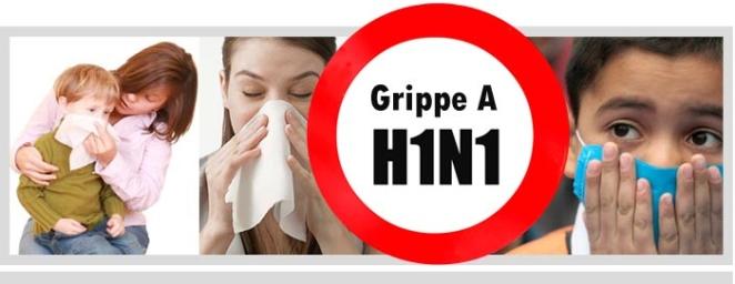 grippe h1N1 spam